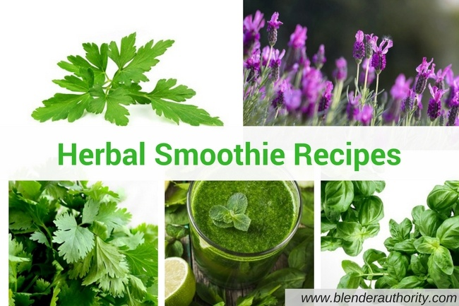 Best Herbal Smoothie Recipes